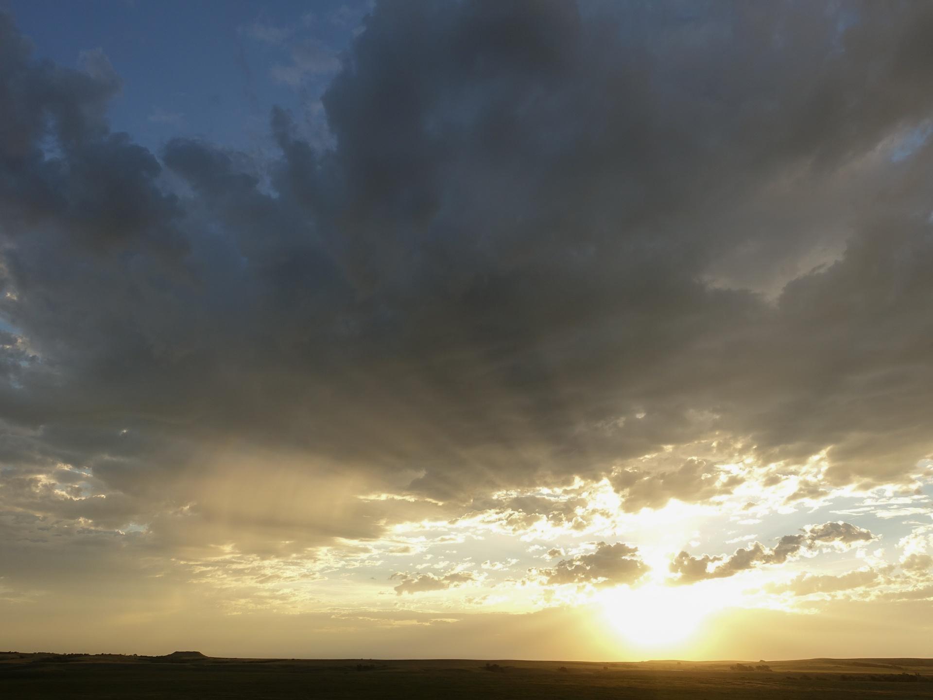 Todd Conty Prärie im Morgenlicht - Süddakota