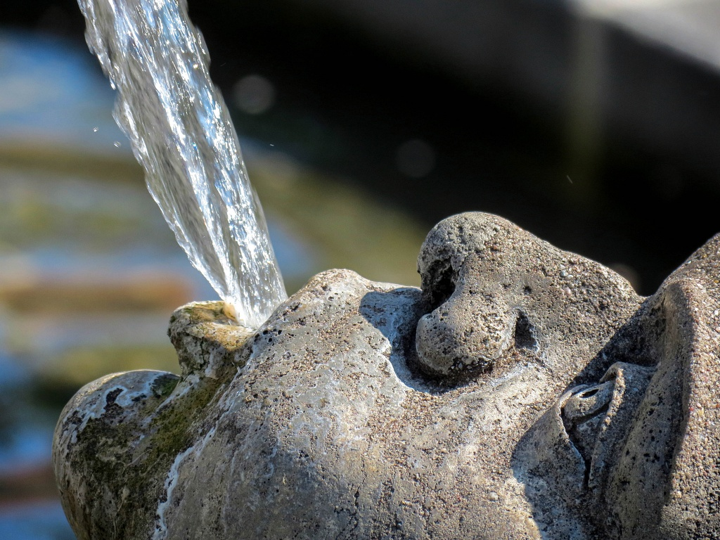 Wasserspeier - Überlingen am Bodensee